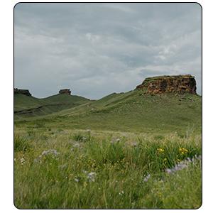 paysage de nature